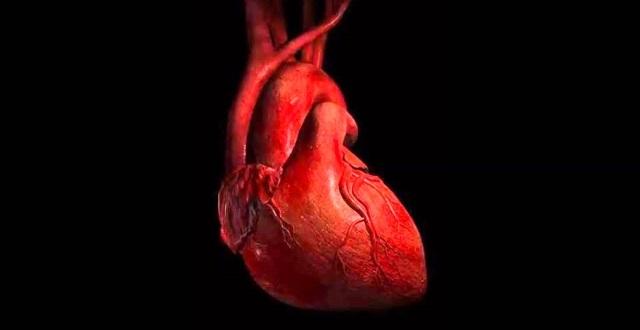 Jak wzmocnić serce? Praktyczne porady